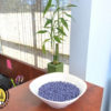 hard-wax-beans-bag-lavender-2